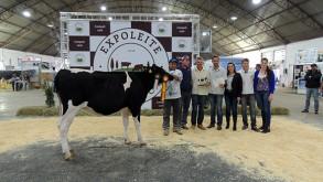 Sulcredi marca presença na Expoleite Beef Show 2016